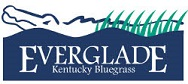 Everglade Kentucky bluegrass grass seed